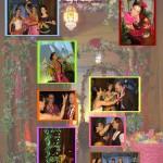 8 Bollywood presentatiefiche
