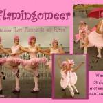 1 PK Flamingo